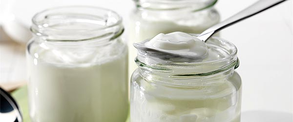 Ev yapımı yoğurt tarifi