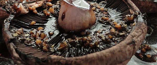 Izgara mantar nasıl yapılır?
