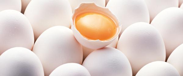 Yumurta taze mi değil mi?